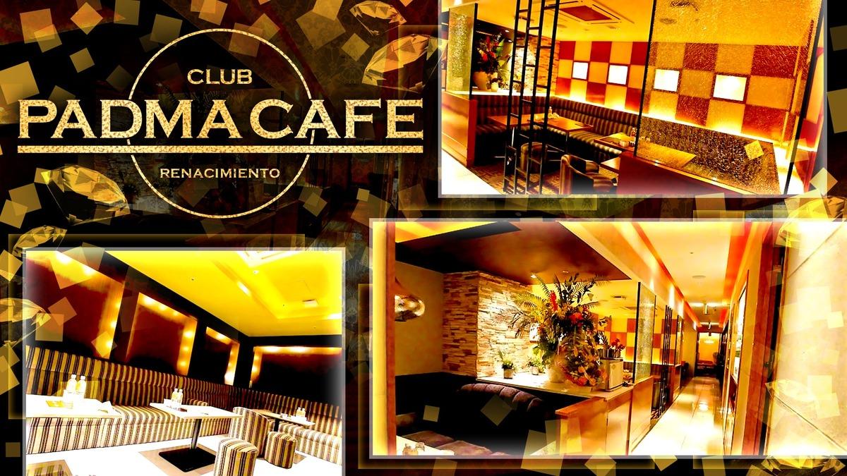 PADMA CAFE