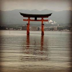 BUNNY 横浜