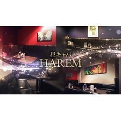 HAREM(昼)