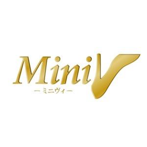 MiniV