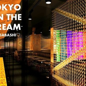 Tokyo on the Dream
