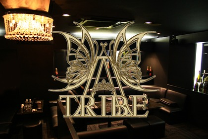 A TRIBE