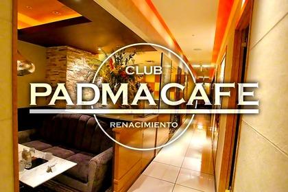 パドマカフェ(札幌市 すすきののニュークラブ)