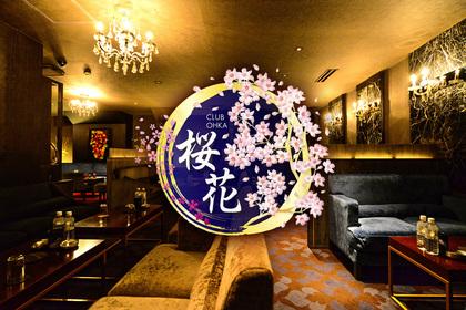 オウカ(新宿区 歌舞伎町のキャバクラ)