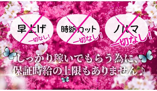 ONE TOKYO 桜花求人情報